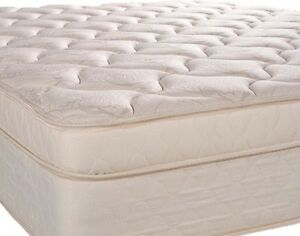 Queen size Bed& bed spring
