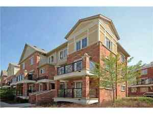 New Gorgeous Condo Townhouse for lease in Oakville!