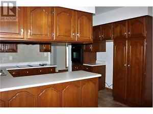 Solid cherry wood kitchen cabinets