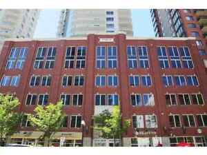 Downtown 2 Bedroom, 2 Bath Icon 2 Tower Furnished