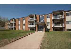 REDUCED! 10014 Morrison St - 1 & 2 bedroom apartments