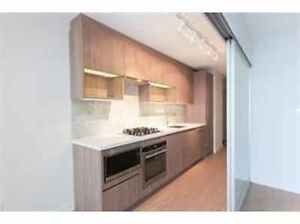 Brand New 1 Bedroom Apartment! MUST SEE