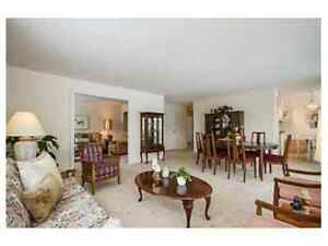 Large 3 Bedroom Condo Apartment for rent near Westboro