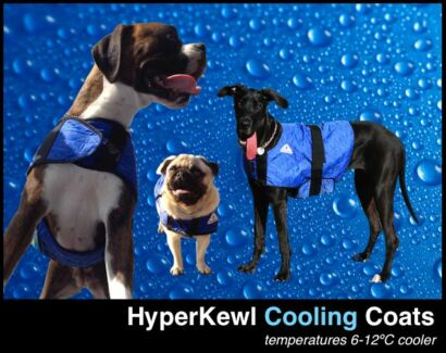 HyperKewl Dog Cooling Coat XS -XXL Ipswich Ipswich City Preview