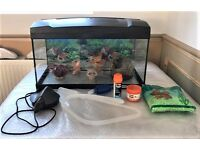 52 Litre Fish Tank With Built In Light & Accessories