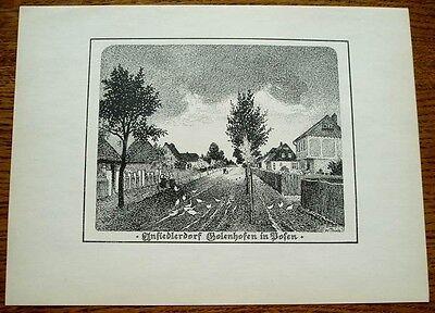 Posen - Ansiedlerdorf Golenhofen: alte Ansicht / Druck ca 1920