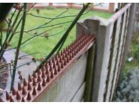 Security fence anti intruder, cat, fox and other animal spikes
