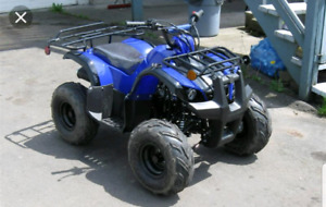 WANTED your chinese atvs and dirt bikes