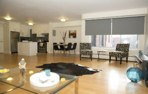 Downtown Montreal 4 1/2 bedroom apartment rental