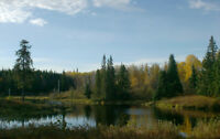 42 acre hunting/recreational lot 20 minute atv ride  Larder Lake