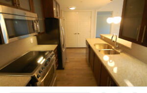 Beautiful Downtown Apartment Sublet - available October 1