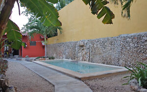 $82 USD/ day in Centro Merida, MX - winter booking available