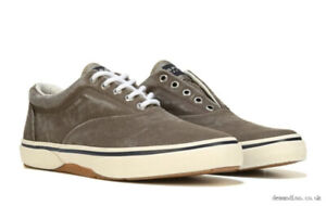 Men's Sperry top Sider. -running shoes brand new in box