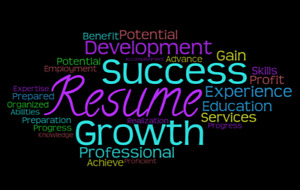 Professional Resume & Profile Writing Services