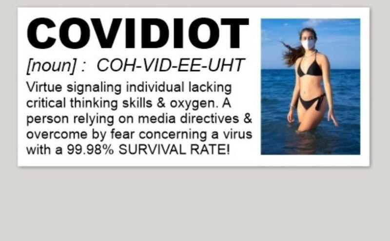 "COVIDIOT Sticker GOV-DID FRAUD SHEEPLE 5"" Bumper Sticker GREAT RESET FAKE NEWS"