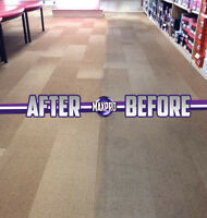 Professional Carpet Cleaning - Best Price