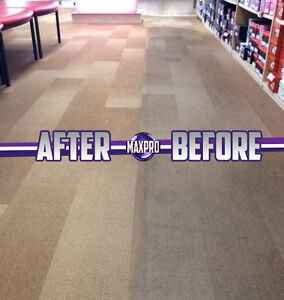Professional Carpet Cleaning Specials Kawartha Lakes Peterborough Area image 7