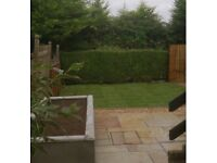 Lawn Order. Mowing and Strimming and general garden maintenance for the summer months