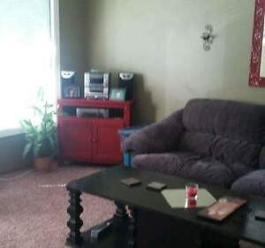 Urgently needing a roommate for Jan 1 to share home