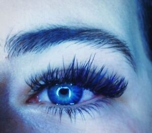 5x certified - need lash model color lashes