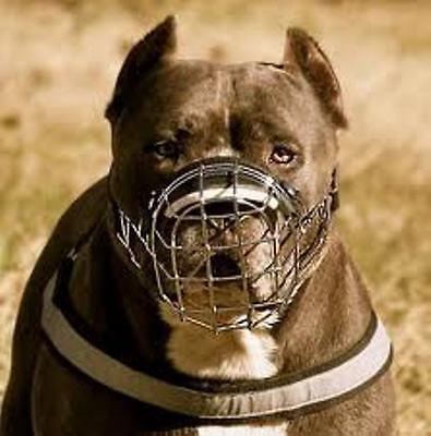 Neu Stark Metall Draht Korb Hundemaulkorb Amstaff Pit Bull,Bullterrier Größe 4,5 (Maulkorb Größe 5)