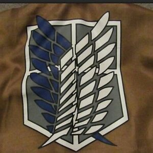 Attack On Titan Cosplay Survey Corps Jacket/Cape/Wig Jean