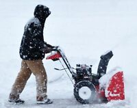 * LOW PRICE* SNOW REMOVAL