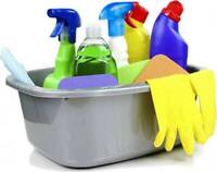 Exceptional cleaner with one weekly opening!