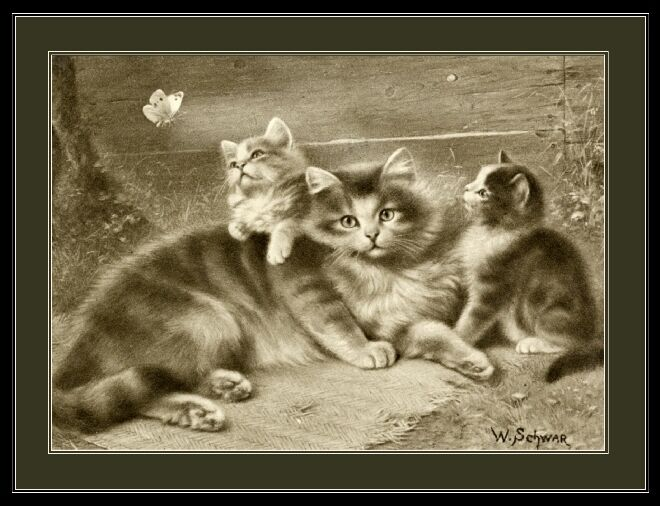 English Picture Mother Cat Kittens Cats Kittens Vintage Art Print Poster