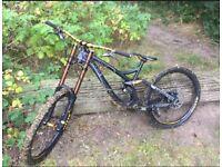 Nd Fuzz downhill bike (L)