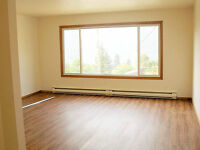 3 bedroom duplex for rent Nelson, July 1st