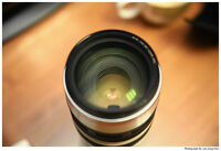 Canon EF 100-400 L IS