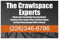 THE CRAWL SPACE EXPERTS