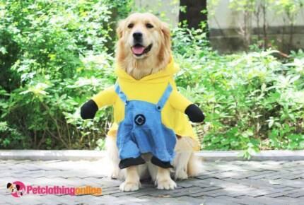Dog & Cat Pet Costume Clothing Store Online. Work From Home.