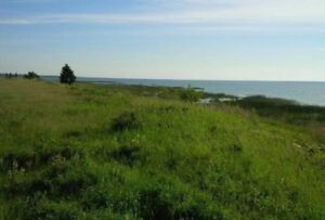 Lake Front Lot- 5 acres of Land