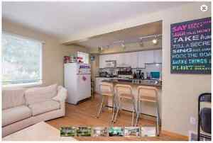 Student rent located between UWO campus and Downtown London Ontario image 7