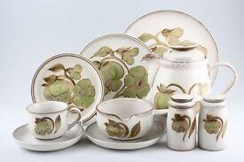 Denby Troubadour Dinner and Tea set