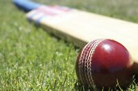 Looking to Play Cricket