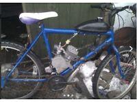 mountain bike 80cc