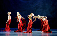 Shen Wei Dance Arts: Folding and Rite of Spring – March 2-3, 201