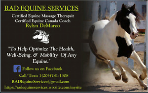 Equine Massage. Multiple Horse Discount!!