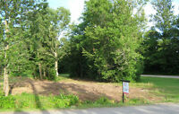 Beautiful Lot ......In Quiet Sussex Subdivision