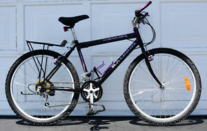 RALEIGH 18 SPEED ROAD BICYCLE MOUNTAIN BMX BIKE