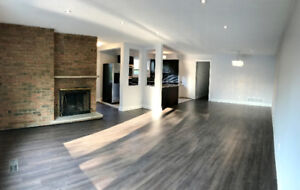 Newly Renovated House at Don Mills/ Steeles
