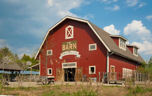 Will move or take down your old barn for FREE