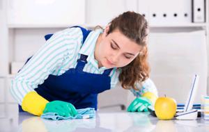 Femme de ménage,ménagère recherchée. Cleaning lady wanted