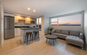 1 Bedroom Apartments NEW Renovated SOUTH END