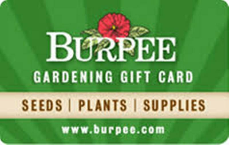 100 Burpee Gift Card - Email Delivery - $45.67