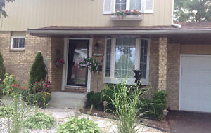 Beautiful Two Story home Forest Glade OPEN HOUSE SUN 1-4
