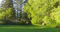 Building Lot half acre in the Town of Shawville Quebec